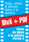 009-02-video-guitare-blues.jpg
