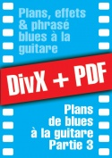 009-03-video-guitare-blues.jpg