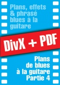 009-04-video-guitare-blues.jpg