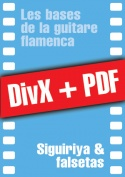 011-05-video-guitare-flamenca.jpg