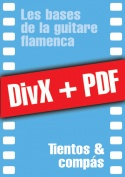 011-06-video-guitare-flamenca.jpg
