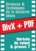 054-06-video-batterie-blues.jpg