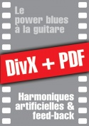 085-05-video-guitare-blues.jpg